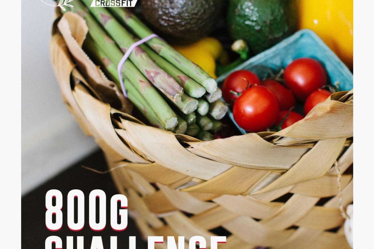Img 800g challenge
